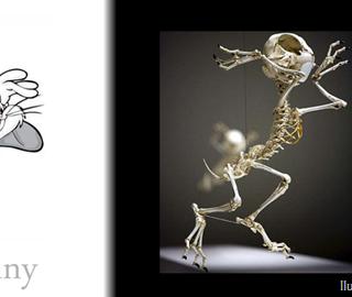 Esqueletos realistas de los Cartoons más conocidos
