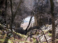 Pogled skozi naravno okno