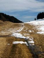 Sneg se tudi nad tisoč metri hitro tali