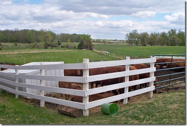 Michalek Farm