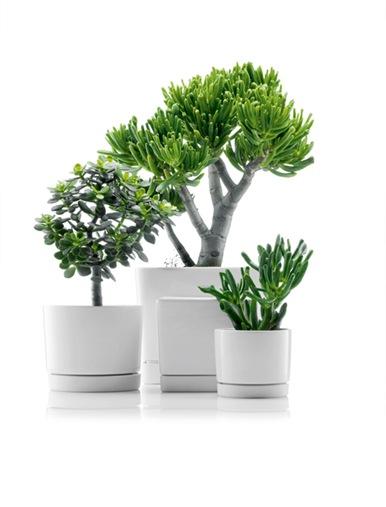 minimalist-flowerpots-from-bodum-1