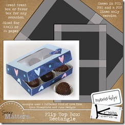 FlipTopBox021210