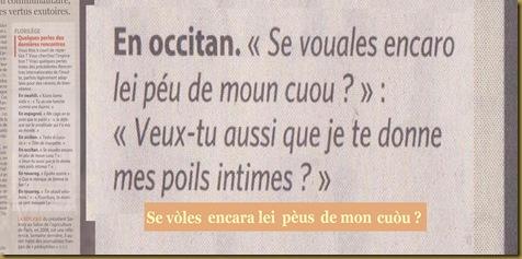 Vulgaritat occitana