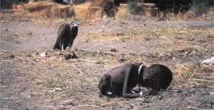 nilgunyalcin child vulture