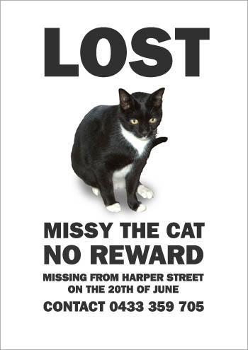 missing_missy5