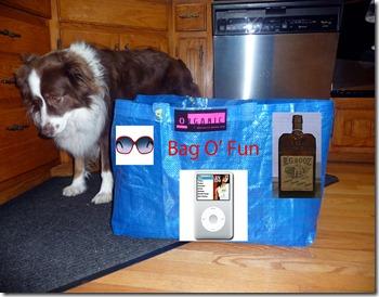 Bag O Fun