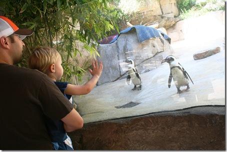 Dallas Zoo 015