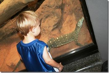 Dallas Zoo 031