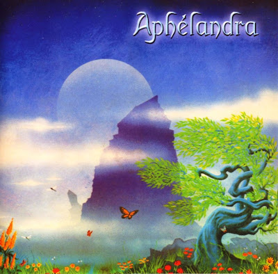 Aphélandra ~ 2001 ~ Aphélandra