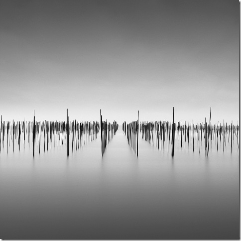 David Burdemy - tokanome_300