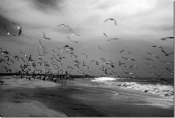 Pista de Nouamghara Nouakchot por la playa