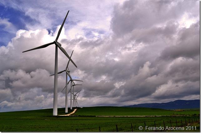 Fernando Arocena eolicas - 0344