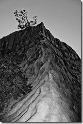 Torrey Pines- b&w rocks-3