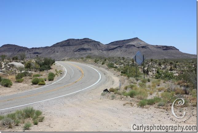 Mojave Desert-6