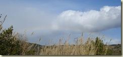 rainbow2_1_1
