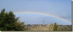 rainbow4_1_1_1