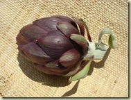 first artichoke to eat_1_1_1