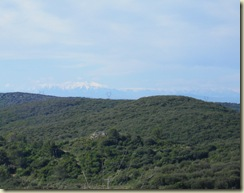 canigou from montesquieu_1