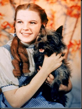 nm_wizard_oz_dorothy_090813_ssv