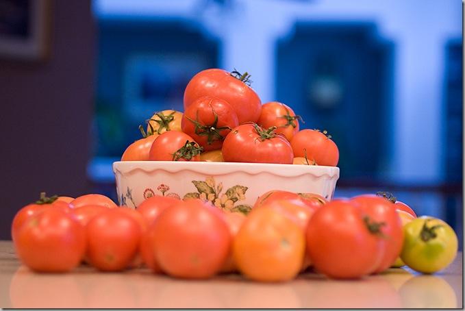 TomatoesGard