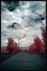 The_Walk_by_mrcool256
