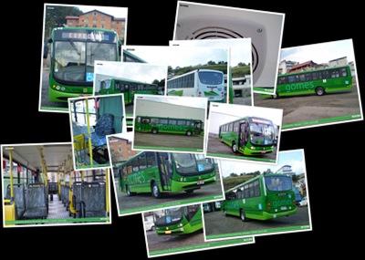 Exibir Empresa de Transporte Gomes- Carro 800