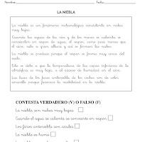 LA NIEBLA-1