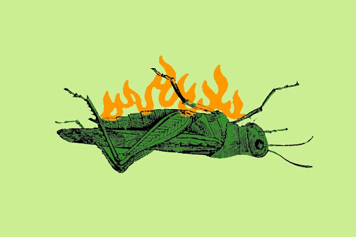 Clip Art Grasshopper. Connect