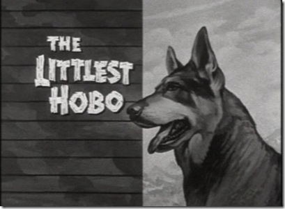 the_littlest_hobo