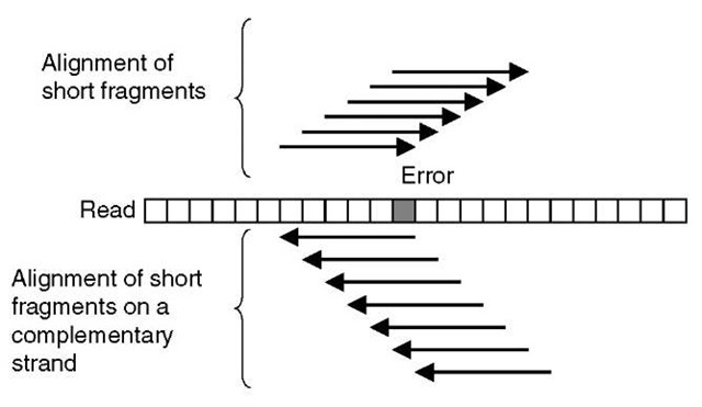 A schematic illustration of a spectral alignment of short fragments of reads. An error in a read affects the number of short read fragments, which can be aligned exactly on a read and its complementary strand