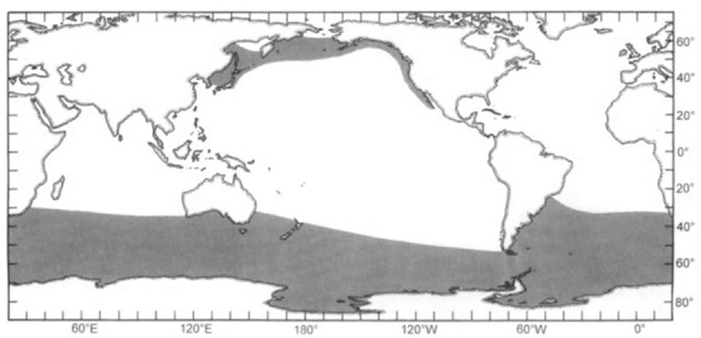 Distribution of giant beaked whales in the North Pacific (Berardius bairdii) and Southern Hemisphere (B. arnuxii) (shaded areas ). Precision of our current knowledge is greater in the former waters.