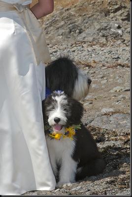 2007_Wedding_ProPics 027
