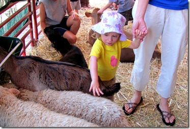 Petting Zoo with Elaine
