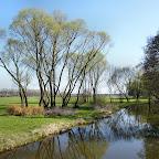 mlýnská Cidlina na jaře.jpg