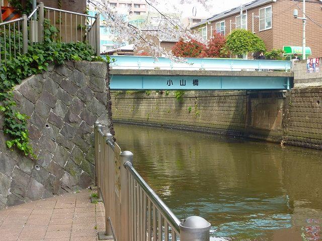 新広尾公園から見た小山橋