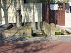 麻布山善福寺 柳の井