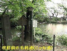 テレビ朝日時代のニッカ池