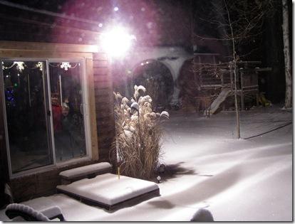 Glistening snow wonder 2
