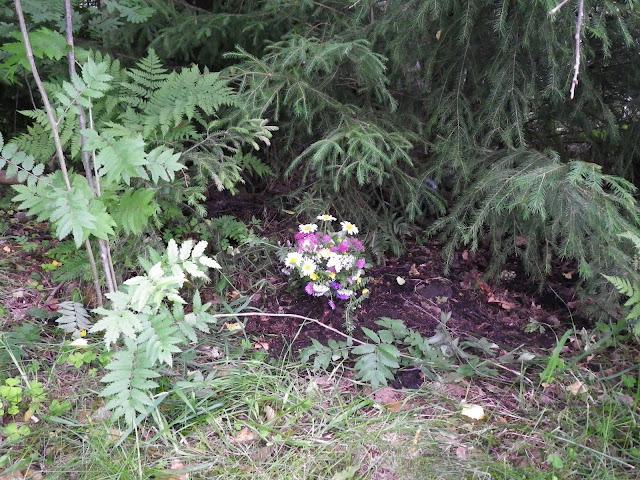Graven med blomster