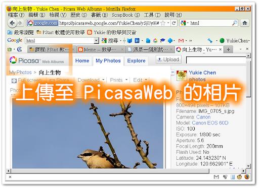 一張上傳至 PicasaWeb 的相片