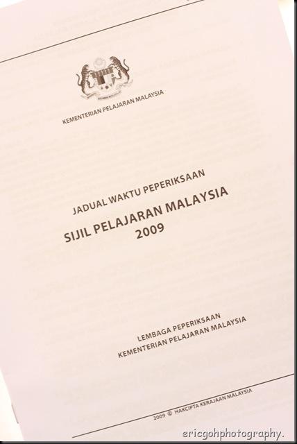 DPP_11654