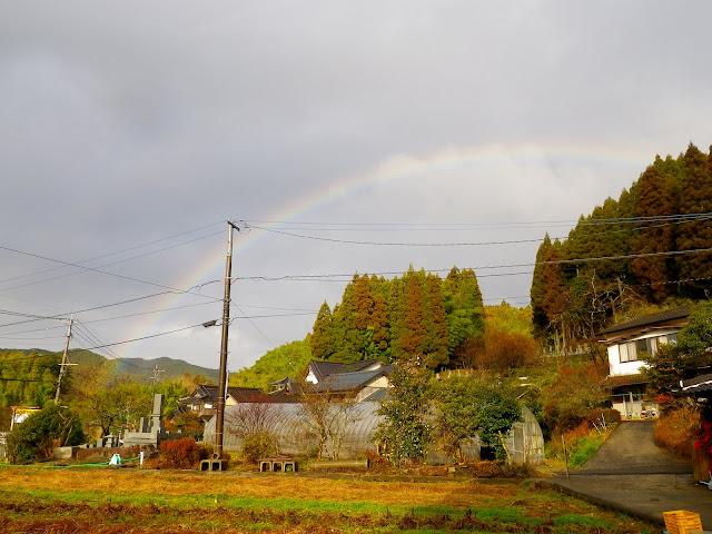 2010-12-22 004.JPG