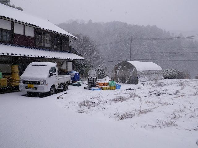 2010-12-26 001.JPG