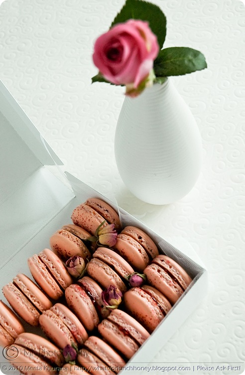 Rosewater and Raspberry Macarons (04) by MeetaK