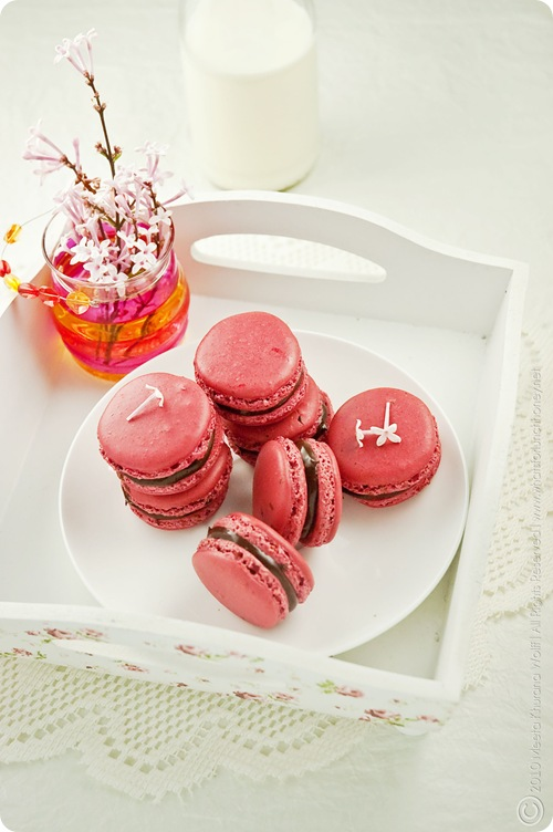 Raspberry Chcocolate Tahini Macarons (0007) By MeetaK