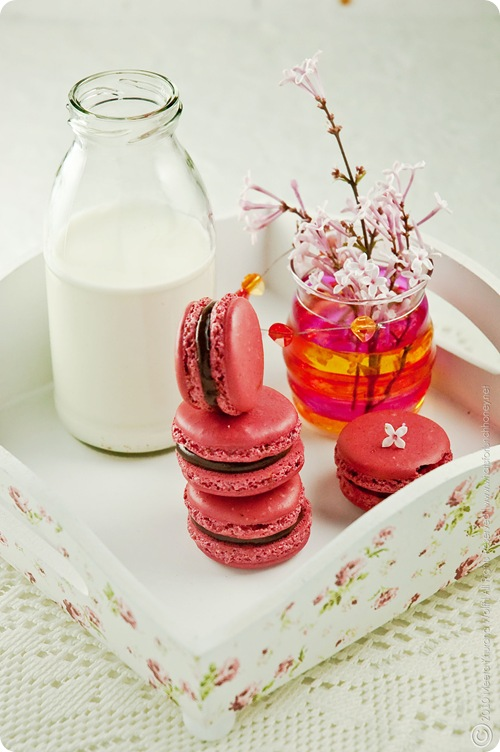 Raspberry Chcocolate Tahini Macarons (0003) By MeetaK