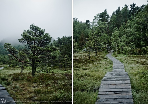 Norway2010_0061-0063_Diptych-CR