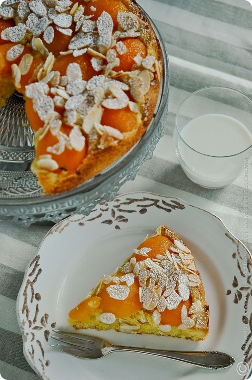 Apricot Saffron Cake (0009) by MeetaK