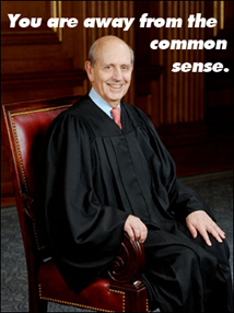 breyer common sense