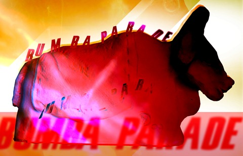 BumbaParadevirtual